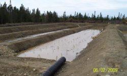 Sewage Lagoon 3